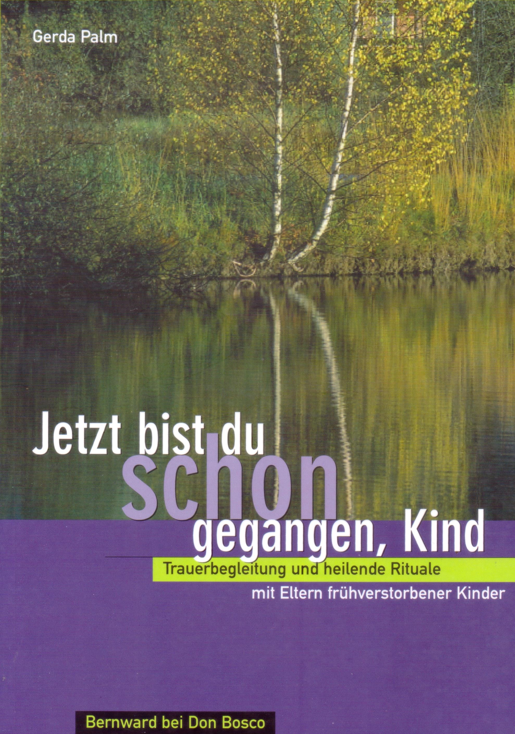 Mein Buch Cover